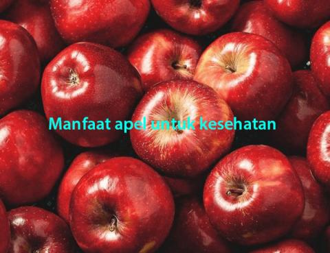 Manfaat Apel Untuk Kesehatan